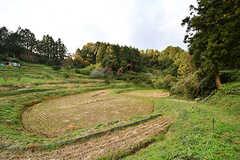 米を収穫した後の棚田。(2016-11-29,共用部,OTHER,1F)
