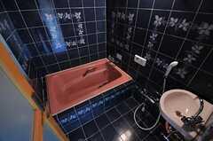 バスルームの様子。(203号室)(2011-05-11,専有部,ROOM,2F)
