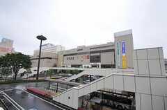 各線・高崎駅の様子。(2011-05-11,共用部,ENVIRONMENT,1F)