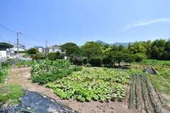 周辺は畑がたくさん。穏やかな住宅地です。(2017-07-13,共用部,ENVIRONMENT,1F)