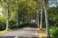 シェアハウスから札幌市営地下鉄・白石駅へ向かう道の様子。(2013-10-21,共用部,GARAGE,1F)