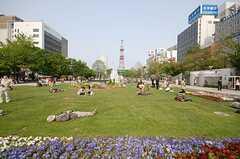 大通公園の様子。(2008-05-24,共用部,ENVIRONMENT,1F)