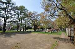 シェアハウスの目の前には公園があります。(2012-05-10,共用部,ENVIRONMENT,1F)