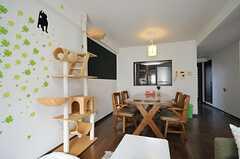 ベランダ側から見たリビングの様子。(802号室猫部屋)(2013-03-25,共用部,LIVINGROOM,8F)