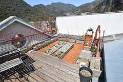 屋上菜園の様子。(A棟)(2017-04-04,共用部,OTHER,4F)