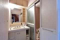 脱衣室に設置された洗面台の様子。(B棟)(2017-04-04,共用部,OTHER,3F)
