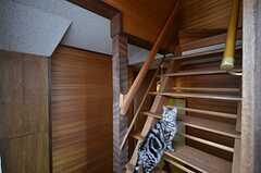 階段の様子。パトロール中の長男、ナルトくん。(2016-04-05,共用部,OTHER,2F)