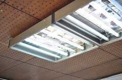 照明は蛍光灯剥き出しです。(2013-04-01,共用部,KITCHEN,1F)