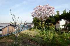 庭の奥には畑があります。(2013-04-01,共用部,OTHER,1F)