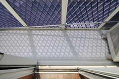 ベランダの様子。日当たりが良いので、窓辺の床が少し傷んでいます。(201号室)(2013-03-23,専有部,ROOM,2F)