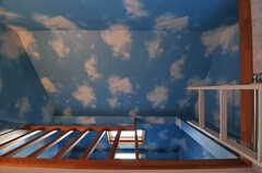 天井は空の壁紙。(203号室)(2013-03-23,専有部,ROOM,2F)