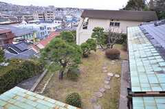 窓から庭が見下ろせます。(203号室)(2015-02-03,専有部,ROOM,2F)