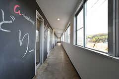 廊下の様子。壁面は黒板塗装です。(2016-12-12,共用部,OTHER,1F)