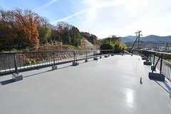 屋上の様子。物干しスペースとしての利用だけではなく、ヨガなどのイベントも開催予定とのこと。(2016-12-12,共用部,OTHER,4F)
