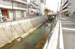 建物のすぐ横に川が流れています。(2016-04-05,共用部,ENVIRONMENT,1F)