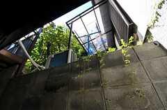 坂の途中に建っているため、庭が部屋よりも上にあります。(109号室)(2013-09-20,専有部,ROOM,1F)
