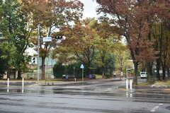 シェアハウス周辺の様子3。筑波大学が近くにあります。(2018-11-05,共用部,ENVIRONMENT,1F)