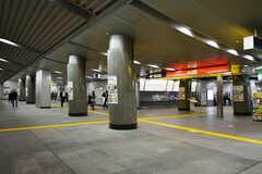 つくばエクスプレス・つくば駅の様子。(2018-11-05,共用部,ENVIRONMENT,1F)