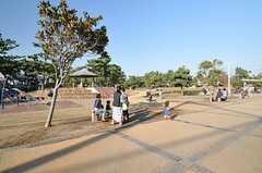 シェアハウス近くにある茅ヶ崎公園の昼下がり。(2013-10-28,共用部,ENVIRONMENT,1F)