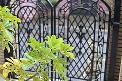 門の内側には鮮やかなグリーン。(2013-02-18,共用部,PARTY,1F)