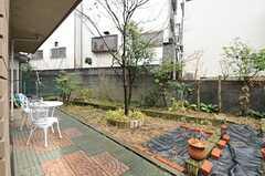 庭の様子2。(2013-02-18,共用部,OTHER,1F)