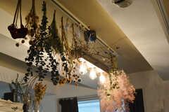 天井のランプ。(2019-11-22,共用部,LIVINGROOM,1F)
