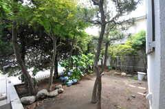 庭の様子。(2012-07-02,共用部,OTHER,1F)