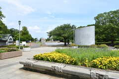 近所の公園の様子。(2018-07-11,共用部,ENVIRONMENT,1F)