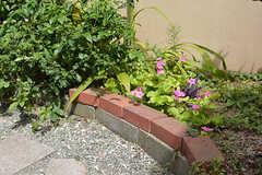 花壇には植物が植えられています。(2016-09-05,周辺環境,ENTRANCE,1F)
