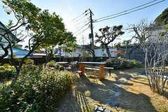 庭の様子。(2017-12-05,共用部,OTHER,1F)