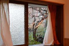 窓からは梅の木が見えます。(101号室)(2020-01-08,専有部,ROOM,1F)