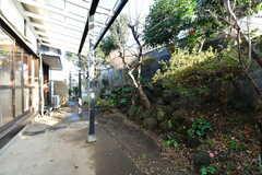 庭の様子2。(2020-01-08,共用部,OTHER,1F)