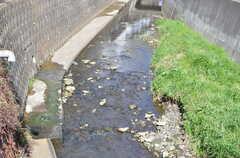 橋の下には川が流れています。(2013-03-22,共用部,ENVIRONMENT,1F)