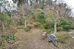 庭は小さな山のようになっていて、上まで敷地内です。(2015-01-28,共用部,OTHER,1F)