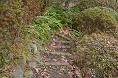 削って作られた階段。(2015-01-28,共用部,OTHER,1F)