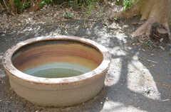 大きな鉢は、オーナーさんの倉庫に眠っていたものを持ち込んだそう。(2013-04-05,共用部,OTHER,1F)