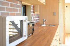 キッチンの一角には、洗面台が設けられています。(2013-04-05,共用部,KITCHEN,1F)