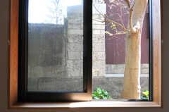窓の外は庭です。(101号室)(2013-04-05,専有部,ROOM,1F)