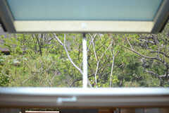 洗面台の上は天窓となっています。(2013-04-05,共用部,OTHER,2F)