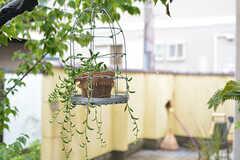 鳥かごに入ったグリーンがかわいいです。(2016-06-21,共用部,OTHER,1F)