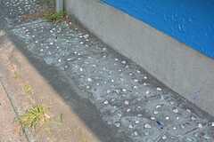 足元のコンクリートにはカラフルな石が埋め込まれています。(2016-03-28,周辺環境,ENTRANCE,1F)