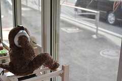 窓際では外に向かってサルが座っています。(2016-03-28,共用部,LIVINGROOM,1F)