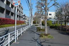 駅からシェアハウスへ向かう道の様子2。(2020-03-24,共用部,ENVIRONMENT,1F)