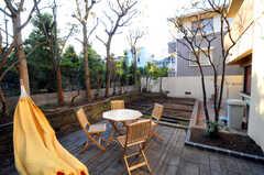 庭にもハンモック。(2010-11-10,共用部,OTHER,1F)