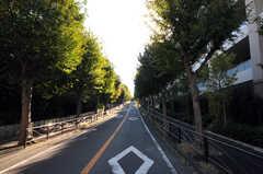 東急東横線・鷺沼駅からシェアハウスへ向かう道の様子。(2010-11-10,共用部,ENVIRONMENT,2F)
