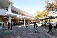 東急東横線・鷺沼駅の様子。(2010-11-10,共用部,ENVIRONMENT,2F)