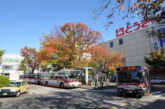 東急東横線・鷺沼駅前の様子。(2010-11-10,共用部,ENVIRONMENT,2F)