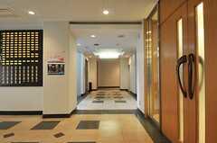廊下の様子。左奥にシアタールーム、右手に共用の水まわり設備があります。(2013-08-22,共用部,OTHER,1F)
