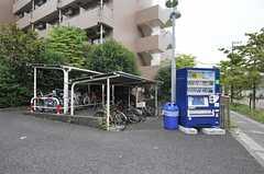駐輪場の様子。(2013-08-22,共用部,GARAGE,4F)