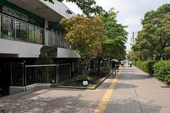 シェアハウスから各線・新百合ヶ丘駅へ向かう道の様子2。(2013-08-22,共用部,ENVIRONMENT,4F)